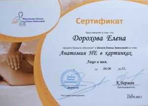 Сертификат Анатомия не в картинках. Лицо и шея.